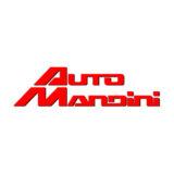Auto Mandini